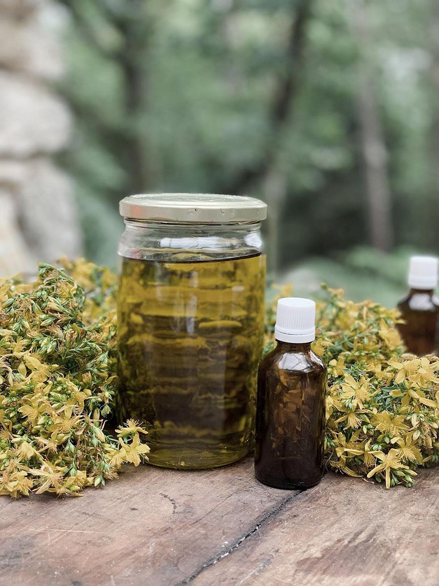 Atelier de préparation d'un remède médicinal : la macérat huileur de millepertuis avec wacohe