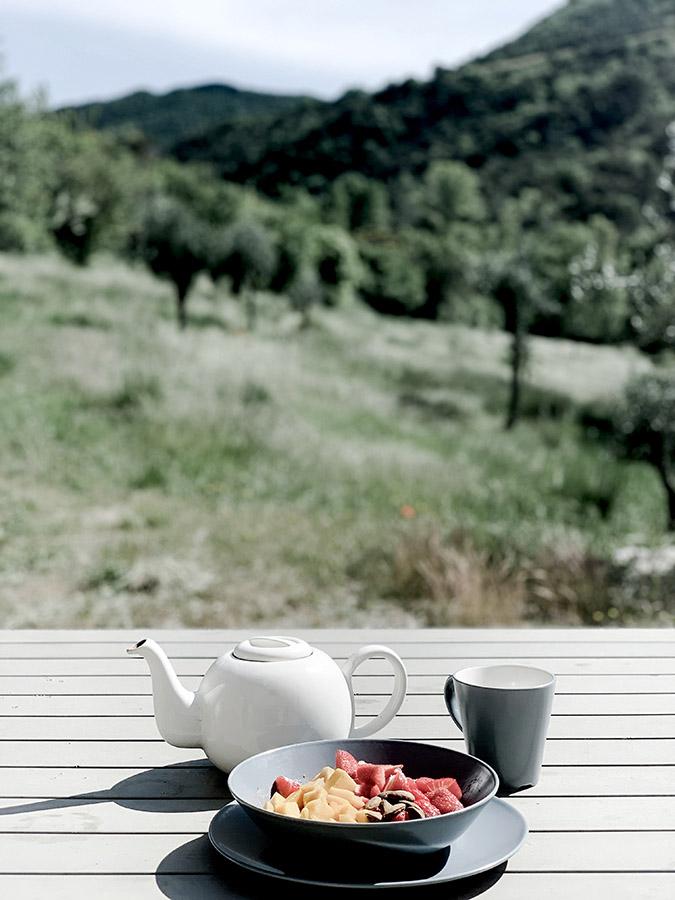 petit déjeuner healthy naturopathie sain et coloré en pleine nature avec Wacohe