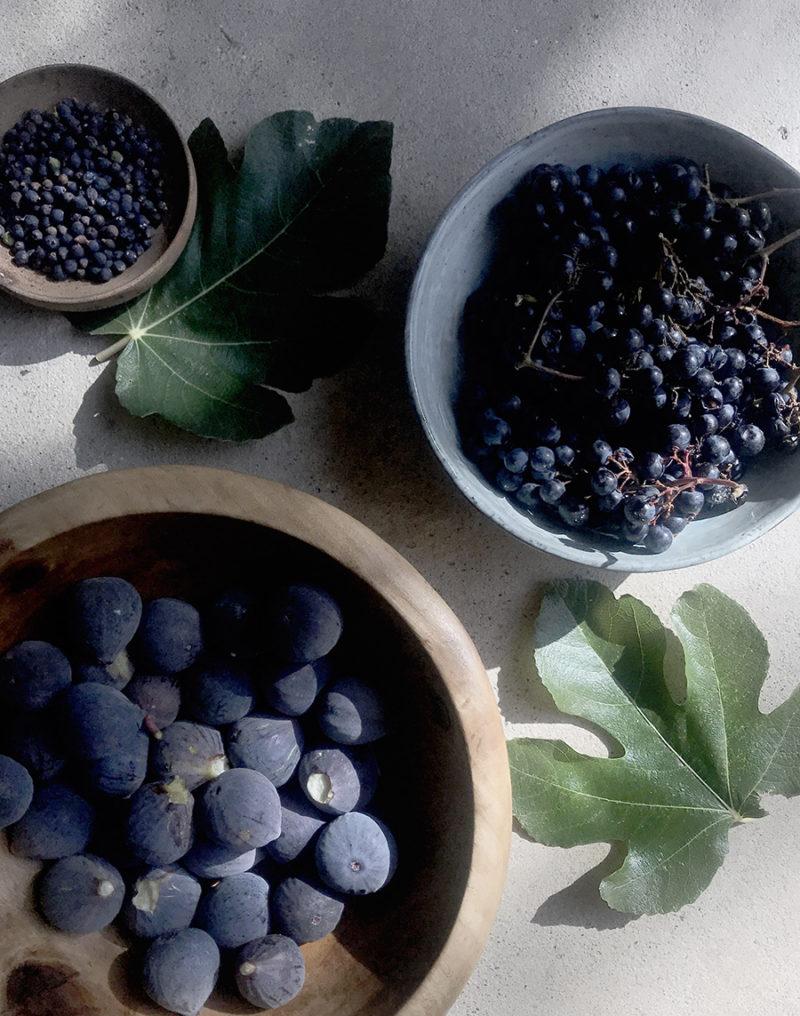 Cueillette fruits et baies comestibles séjours botanique natruopathie de wacohe