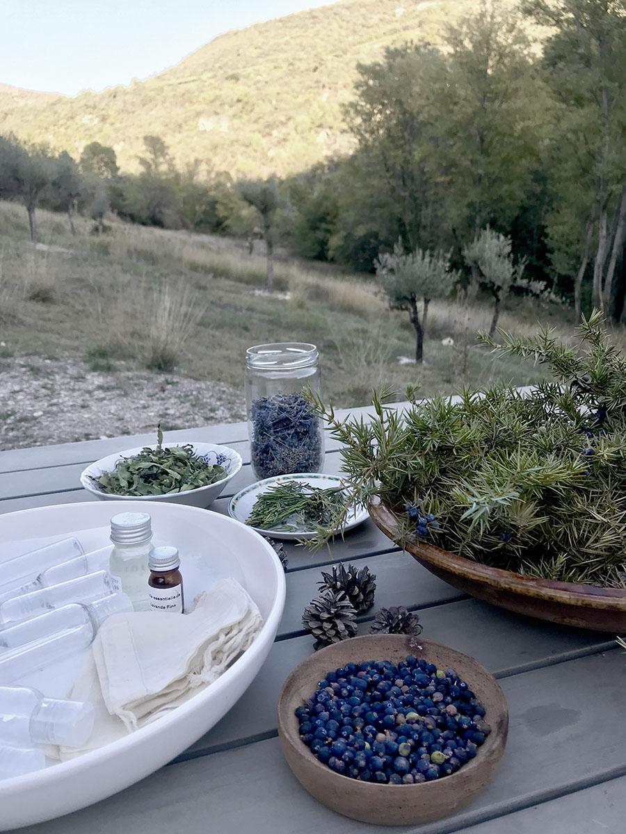 atelier remède médicinal bien-être lors du séjour rando botanique en Drôme by wacohe