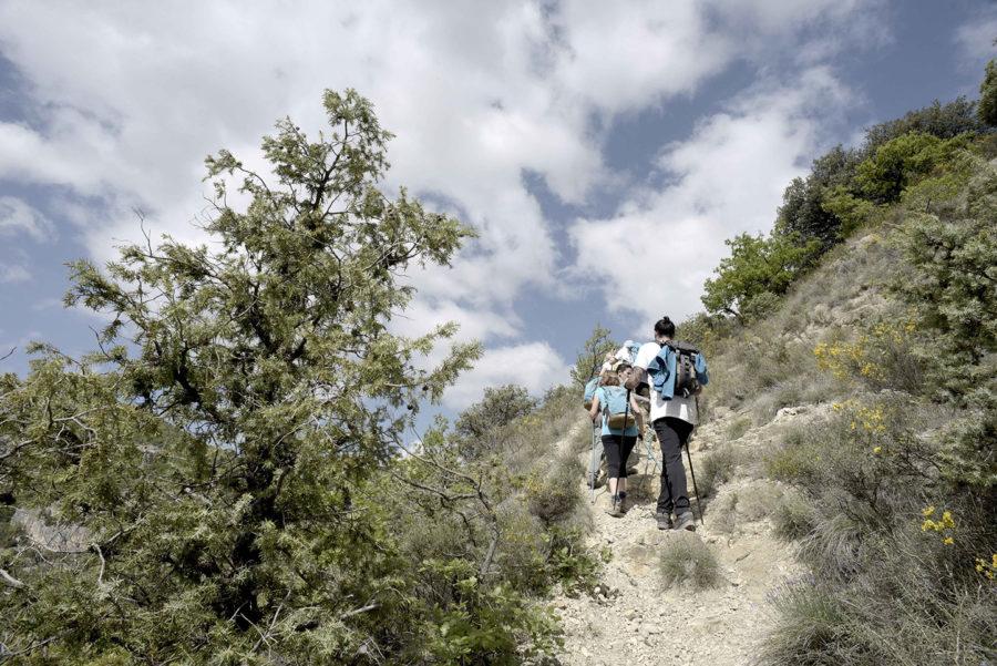Marche en montagne séjour rando détox en pleine nature par wacohe