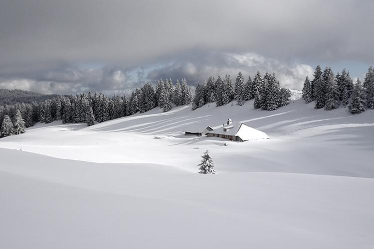 Paysage immaculé et sauvage de la montagne du Jura pour séjour raquettes et chiens de traineaux Wacohe