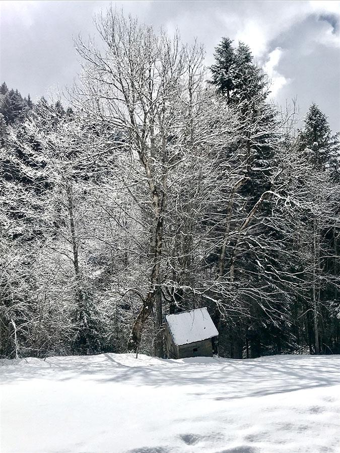 Cabane sauvage dans la neige dans les Bauges lors d'une expérience natureWacohe