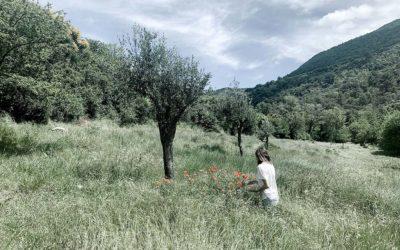 rando botanique et slow life en drome provencale
